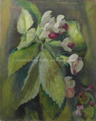 Minka Podhájská - Rozkvetlá květina