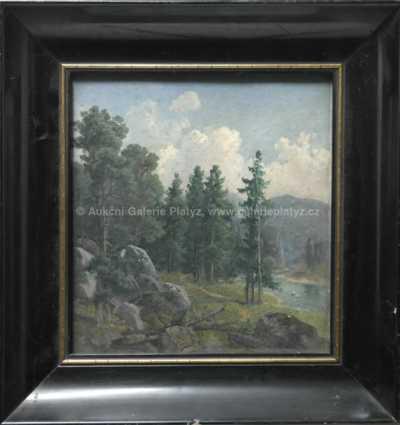 Alois Wolf - Krajina u Lokte