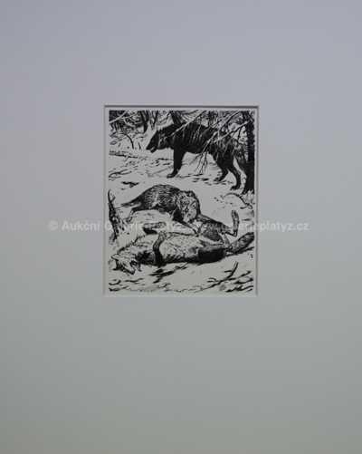 Zdeněk Burian - Mrtvý vlk