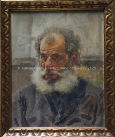 Josef Loukota - Starý muž
