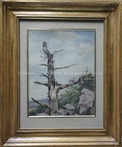 Alois Kirnig - Starý strom