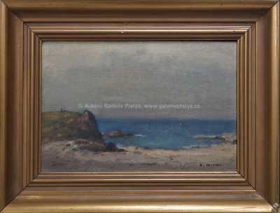 František Michl - Na pobřeží