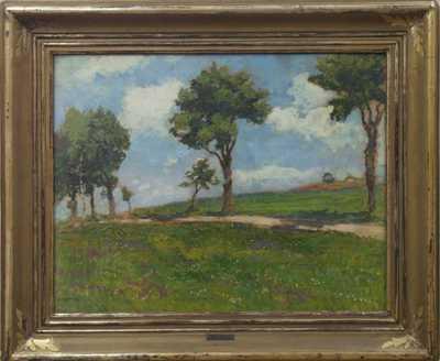 Gustav Macoun - Stromy u cesty