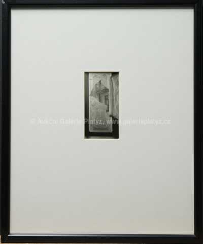 Josef Sudek - Pohled z rozbitého okna