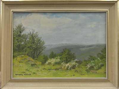 Otakar Hůrka - Pohled do krajiny