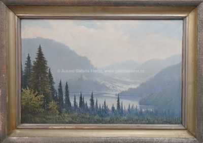 Antonín  Augusta - Horské údoli