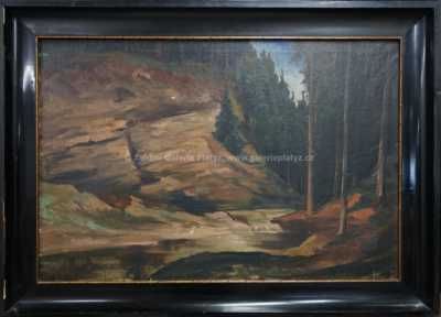 Bohumír Dvorský - Lesní tůň