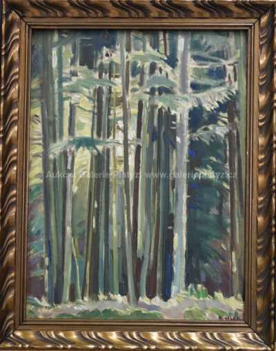 Karel Jílek - Lesní interier
