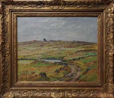 Josef  Kadeřábek - Pastviny