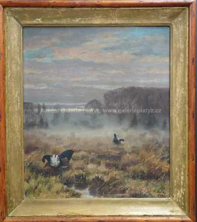 Otakar Číla - Tetřívci v mlze
