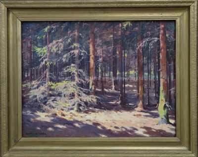 František Daněk - Sedláček - Slunce v lese