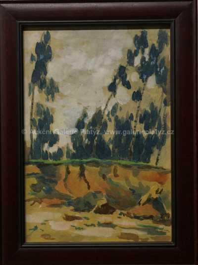Augustin Satra - Okraj lesa