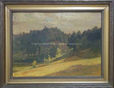 Roman Havelka - Hrad na kopci