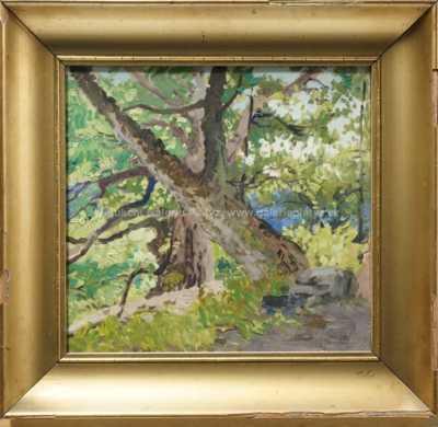 Karel Schadt - Pod starými stromy