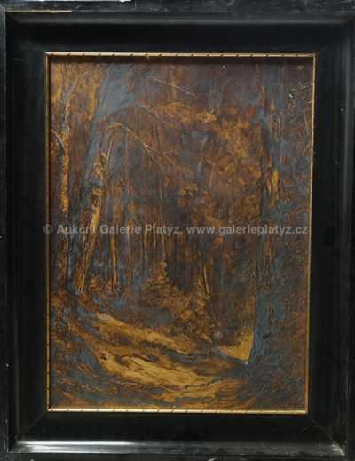 Autor neurčen - Hluboký les