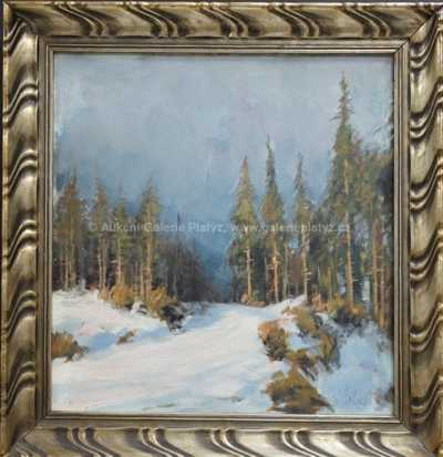 Karel Schadt - Mlha v lese