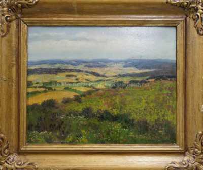 Karel Schadt - Letní den v polích