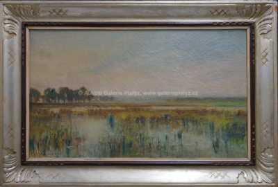 Arkadij Solovjev - Rybník v mlze