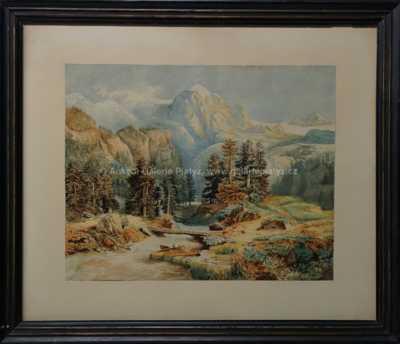 Autor neurčen - Lávka přes horský potok