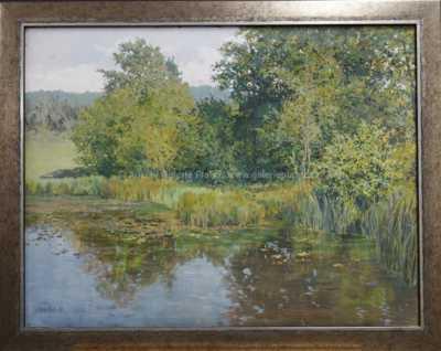Zarostlý rybník