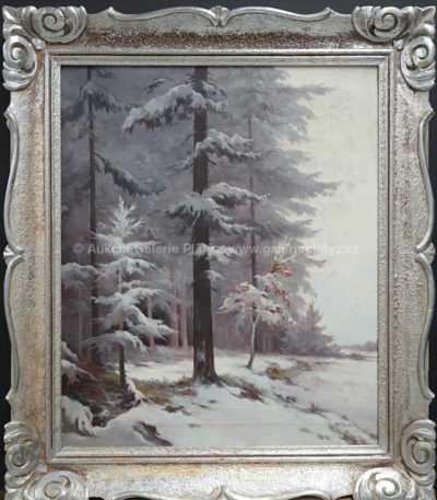 František M. Skula - Zimní nálada