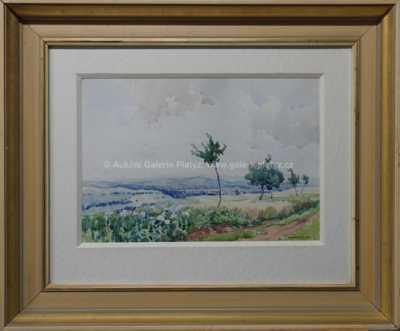 Augustin Mervart - Pohled k Uherskému Hradišti