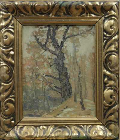 Jaroslav Panuška - Starý strom