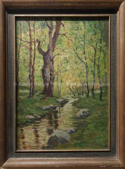 Rudolf Neumann - Lesní potok