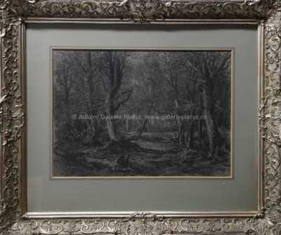 Julius Mařák - Lesní mýtina