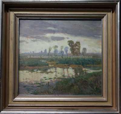 Josef Ullmann - Zarostlý rybník