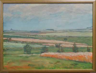 František Kaván - Motiv vítanovský
