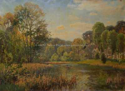 Karel Langer - Rybník v lese