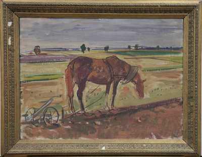 Vojtěch  Sedláček - Kůň na poli