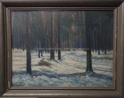Karel Novák - Zasněžený les