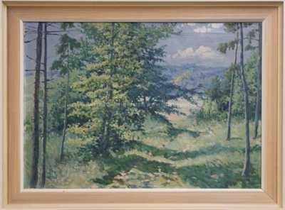 Karel Havlata - Průhled lesem