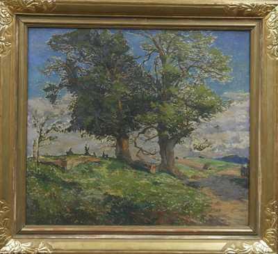 Alois Janeček Pardubský - Staré stromy