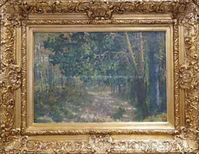 Nesignováno - Cesta lesem