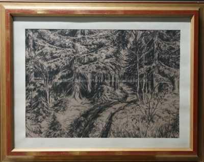 Jaroslav Panuška - Čarodějův les