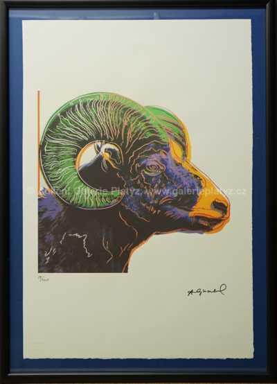 Andy Warhol - Beran