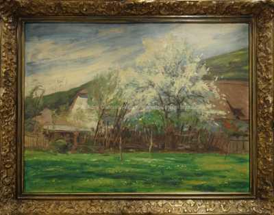 Josef Štolovský - Stromy v květu