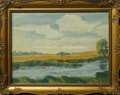 Augustin Mervart - Rybník v krajině