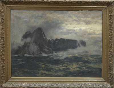 Carl Saltzmann - Ostrov