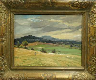 Josef Krejsa - Pohled na Boubín