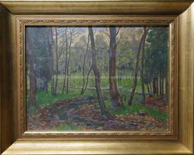 Antonín Hudeček - Potok mezi stromy