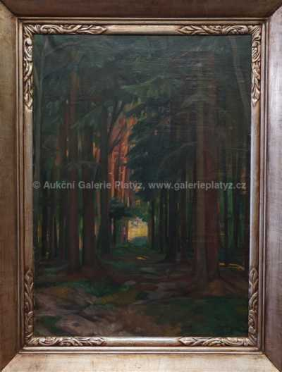 Otakar Nejedlý - Průhled lesem