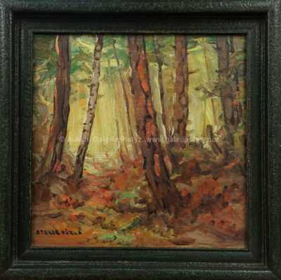 Otakar Hůrka - Slunce v lese