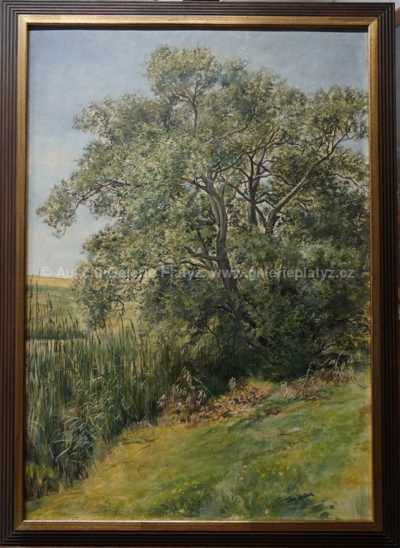 Jan Köppl - Letní motiv