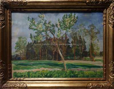 Antonín Hudeček - Na kraji lesa