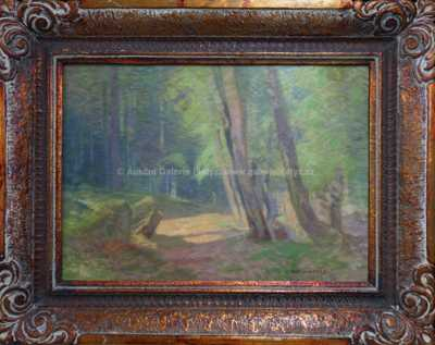 Roman Havelka - V lese