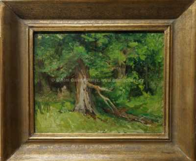 Arkadij Solovjev - Na kraji lesa